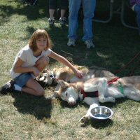 Dogs get belly rubs at Piney Run Apple Fest.