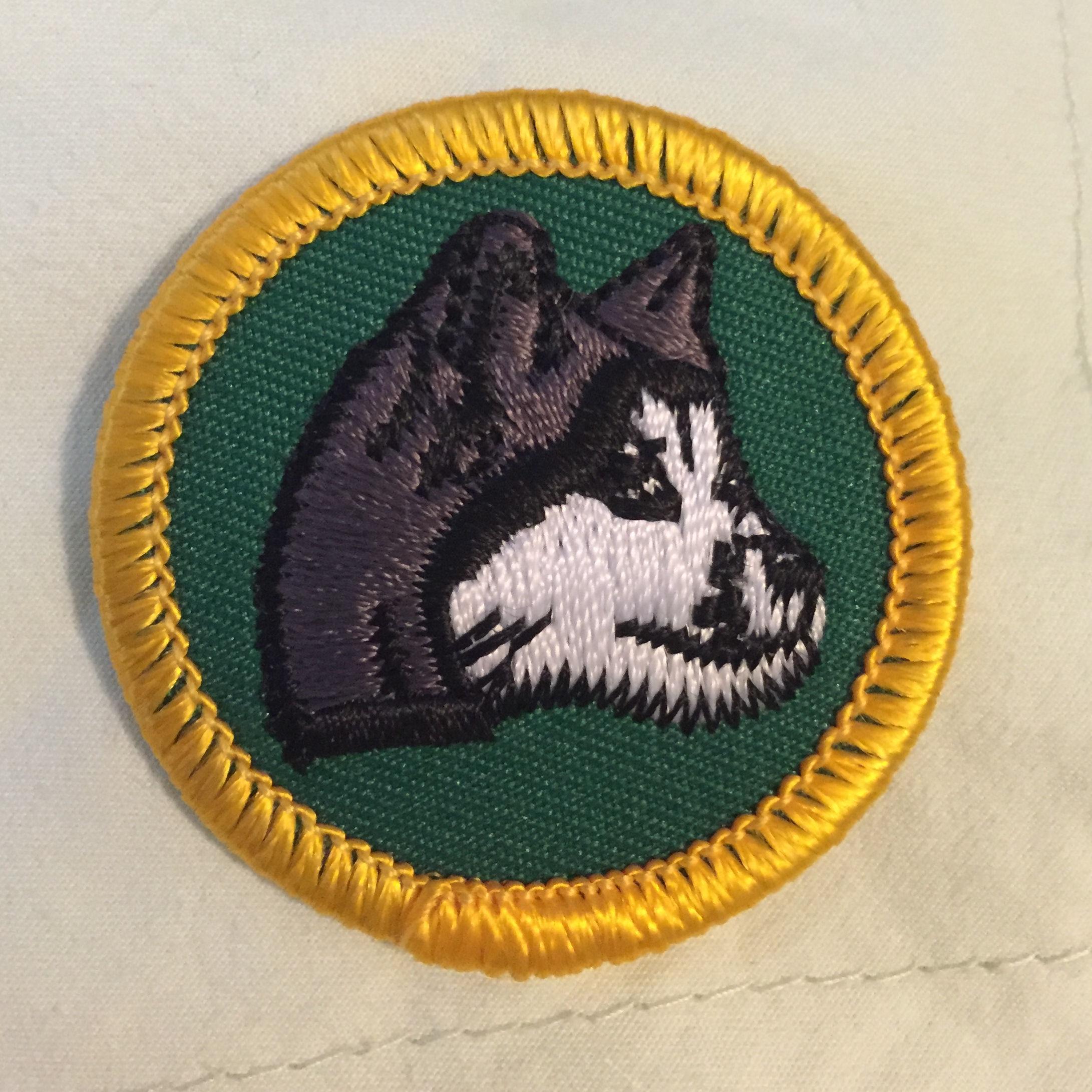 Maryland sled dog adventures llc dog sledding patches girl scout junior dog sledding badge solutioingenieria Images
