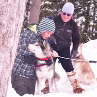 Learning to harness Beaver into a dog sledding harnes